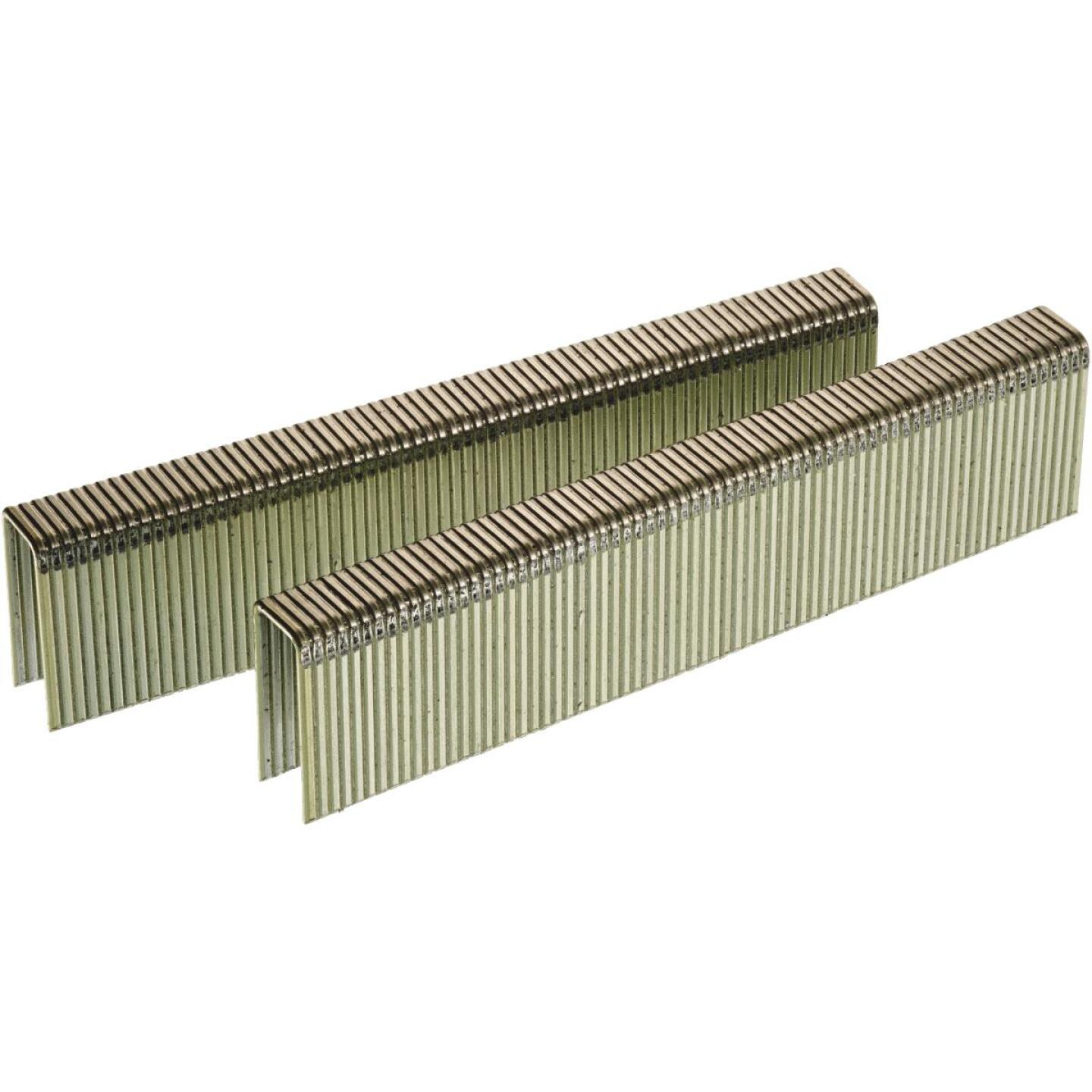 Senco 16-Gauge Galvanized Heavy Wire Decking Staples, 7/16 In. x 1 In. (5000 Ct.) Image 1