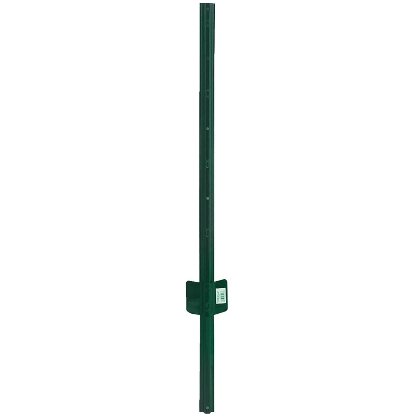 American Posts Light-Duty 6 Ft. 14 Ga. Fence U-Post Image 1